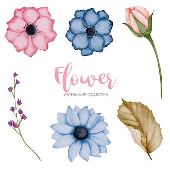 Set di parti separate e riunite per creare un bellissimo mazzo di fiori in stile acquerello