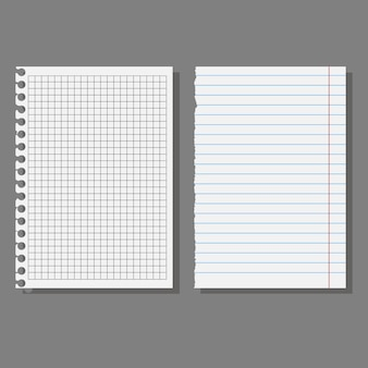 Set of sheets, pages of school notebooks.