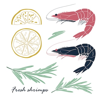 Set of shrimps with lemon and rosemary