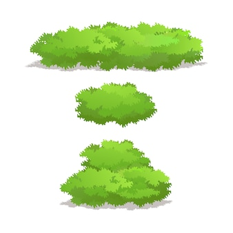 Set of shrubs with various shape vector illustration