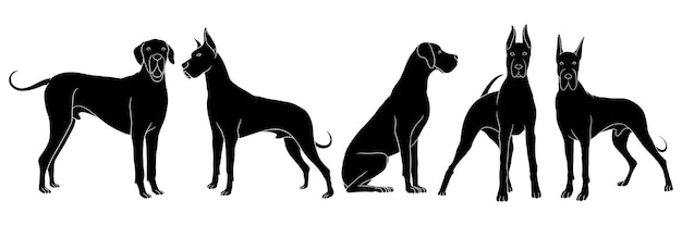 Set of silhouette of great dane isolated on white