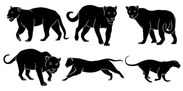Set of silhouette of jaguar isolated on white