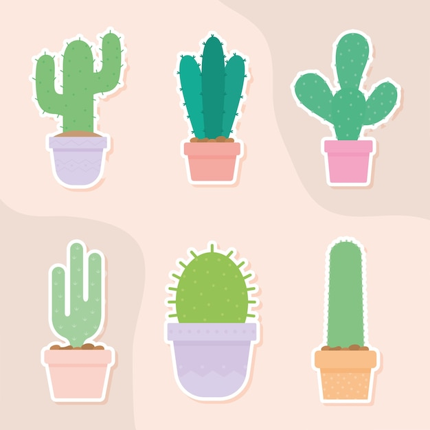 Set of six cactus icons over a salmon color illustration design