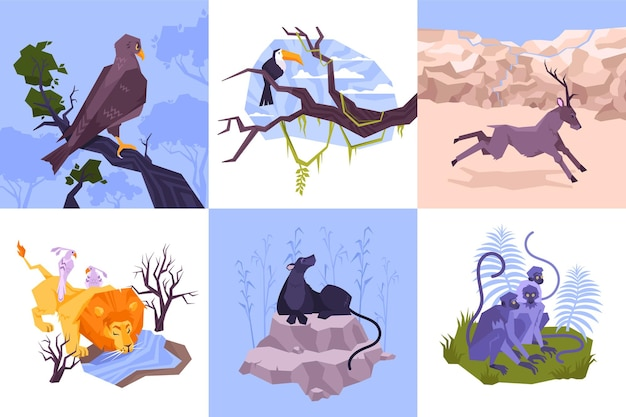 Set of six square compositions with flat tropical landscapes and exotic animal characters with wild birds illustration