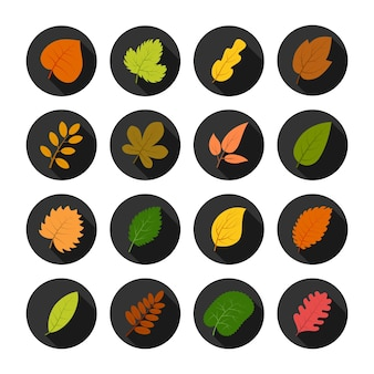 Set of sixteen autumn leaves in circles with shadows. vector illustration