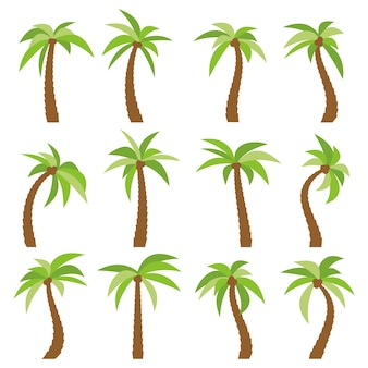 Set of sixteen different cartoon palm trees isolated on white background. vector illustration