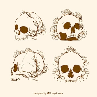 Set of skull sketches with flowers