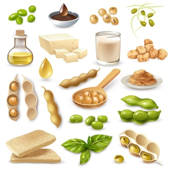 Set of soy food products with ripe beans and green leaves on white  isolated