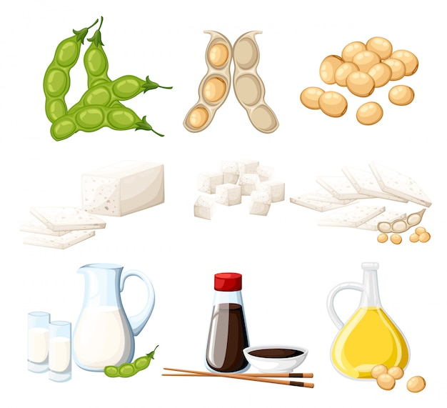 Set of soy products milk and oil in glass jug soy sauce in transparent bottle tofu and beans organic vegetarian food  illustration  on white background web site page and mobile app