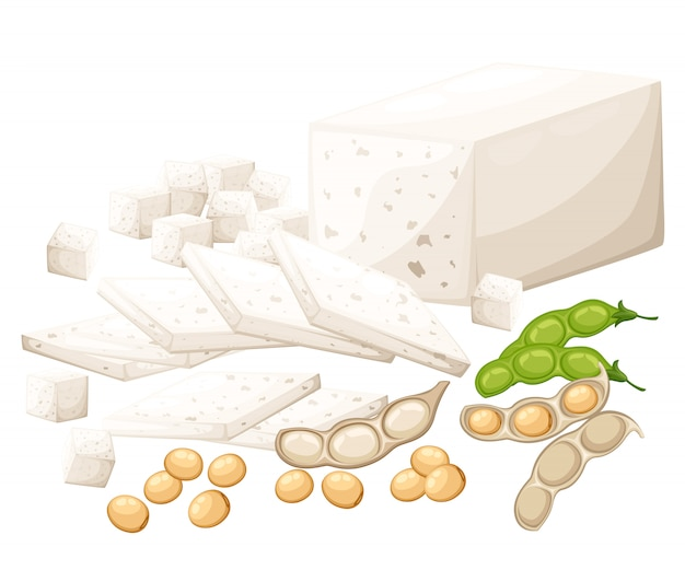 Set of soy products tofu and beans organic vegetarian food  illustration  on white background web site page and mobile app