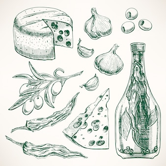 Set of spices, cheeses and vegetables. garlic, olives, chili pepper. hand-drawn illustration