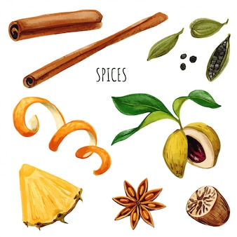 Set of spices including anis star and cinnamon