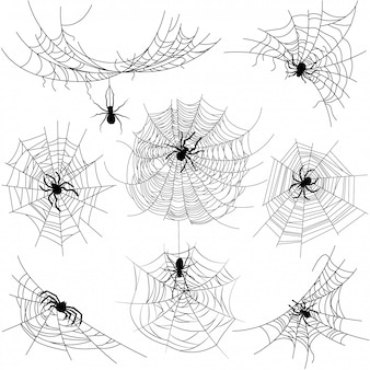 Set of spider web of different shapes with black spiders isolated