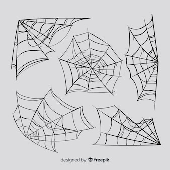 Set of spider webs