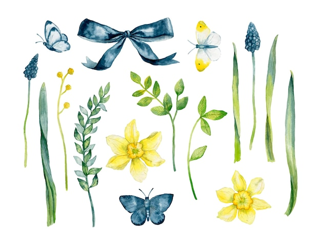 Set of spring elements daffodils butterflies leaves flowers muscari bow