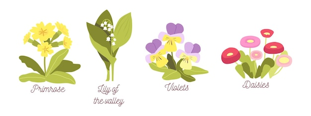 Set spring flowers, bloom garden or forest blossoms primrose, lilly of the valley, violets and daisies, natural plants with leaves and petals isolated on white background. cartoon vector illustration