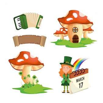 Set st patrick woman with fungus and accordion