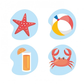 Set of starfish with beach ball and juice beverage with crab. isolated