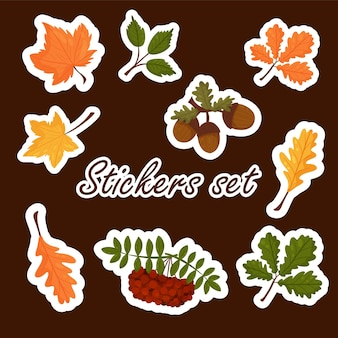 Set of stickers of autumn elements, bright colorful autumn leaves. vector cartoon style. isolated on a white background
