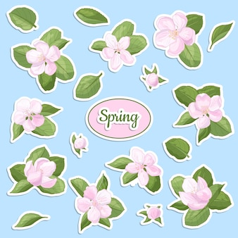 Set of stickers with spring apple blossom, delicate pink flowers and buds