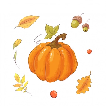 Set in the style of hand drawing pumpkin, autumn and leaves.
