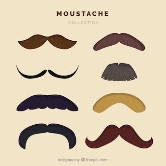 Set di baffi alla moda