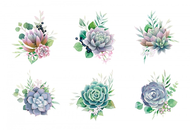 Set of succulent and greenery bouquets for wedding invite or greeting card.
