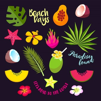 Set of summer tropical fruits, cocktails and leaves