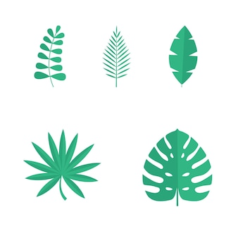 Set of summer tropical leaves isolated on white background. vector illustration. eps10