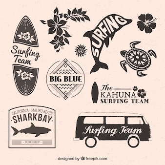 Set di tema di surf badge