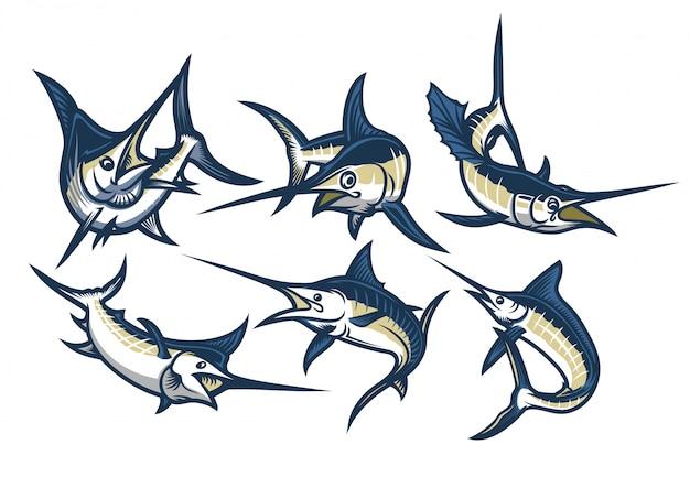 Set of swordfish