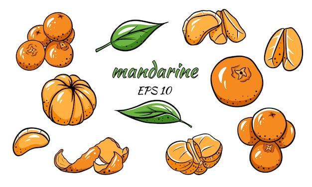 Set of of tangerines. mandarin, slices, leaves, peel.