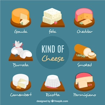 Set of tasty cheeses