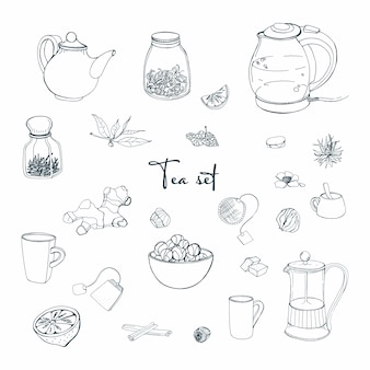 Set tea party objects. collection with hand drawn kettle, jar, lemon, leaf, cup, ginger, cinnamon. illustration.