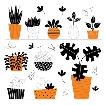 Set of ten vector indoor plants. potted flowers on shelves. stylized home plants. home decor and interior. succulents, monstera, cacti. illustration isolated on white background.