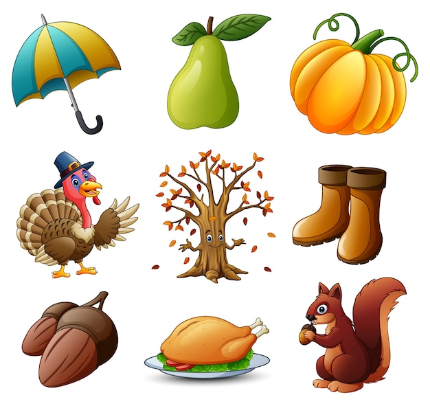 Set of thanksgiving elements on white background