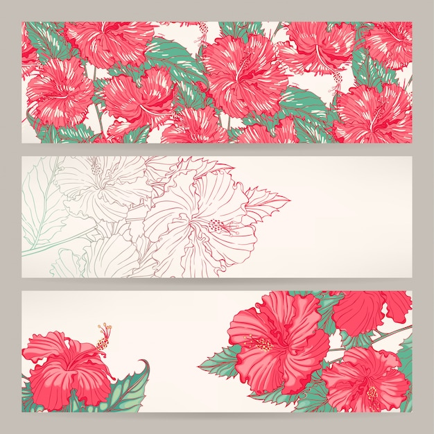 Set of three beautiful banners with pink hibiscus