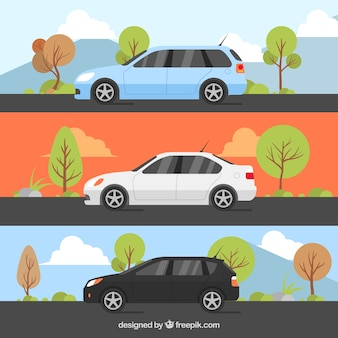 Set of three decorative cars with different landscapes