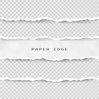 Set of torn paper stripes. paper texture with damaged edge  on transparent background.  illustration