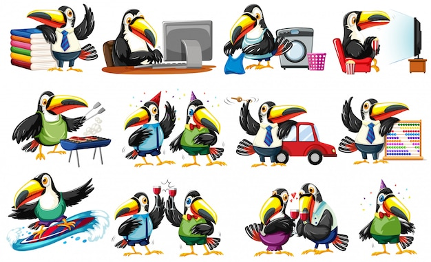Set of toucan character