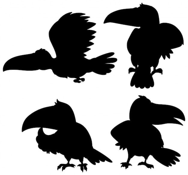 Set of toucan silhouette