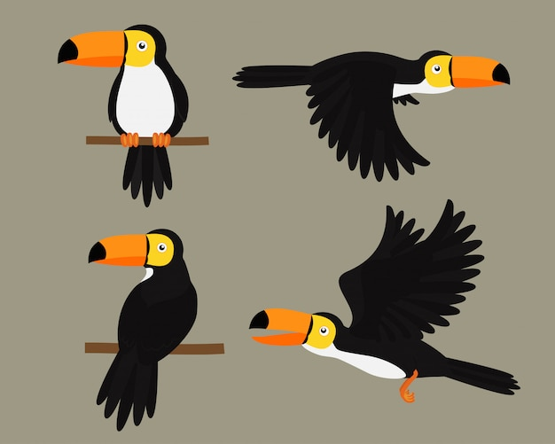 Set of toucans bird character cartoon