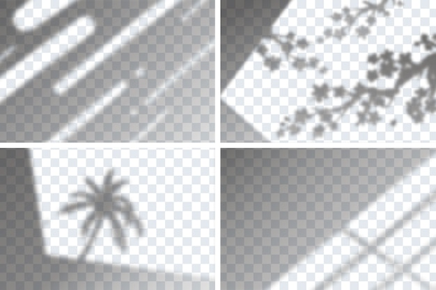 Set of transparent shadow overlay effects for branding Free Vector