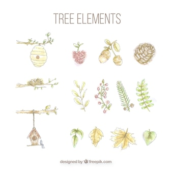 Set of tree elements painted with watercolors
