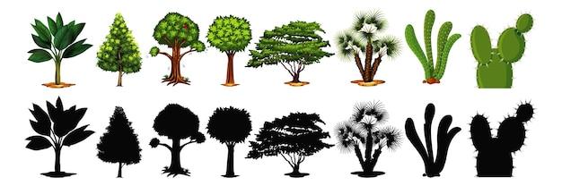 Set di albero e ombra