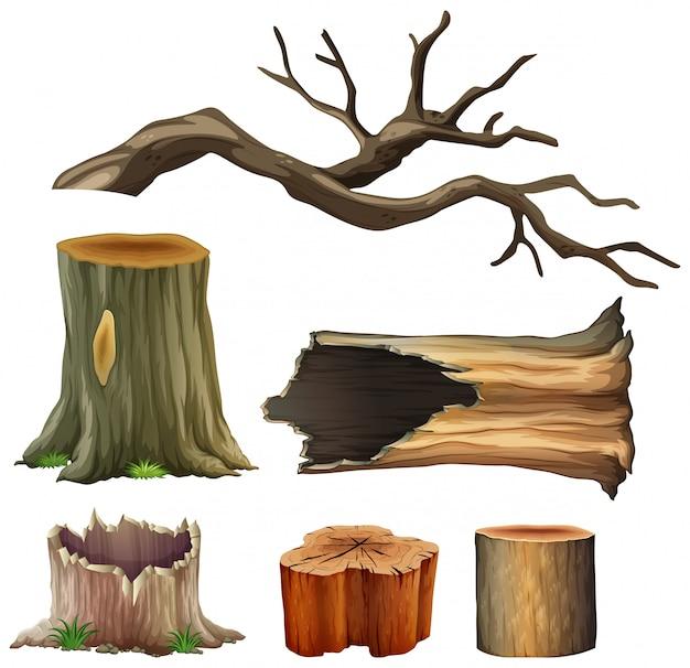 Set of tree wood