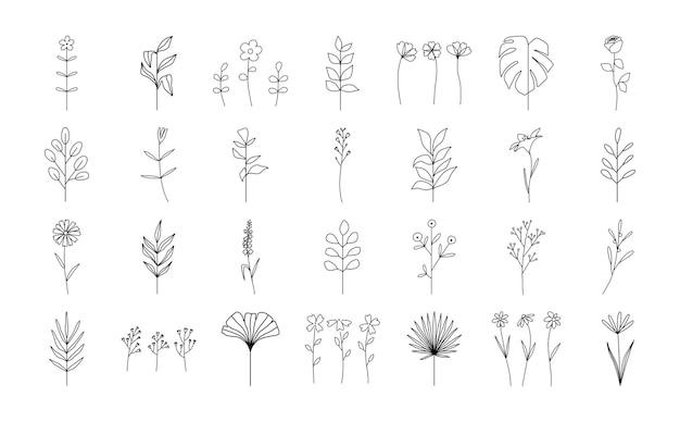Установите модные абстрактные цветочные минималистские ботанические ветви и листья
