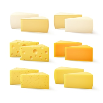 Set of triangular pieces of various kind of cheese