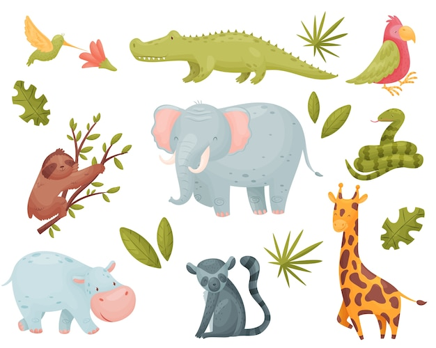Set of tropical animals isolated on white