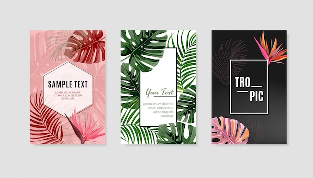Set of tropical design cover template.